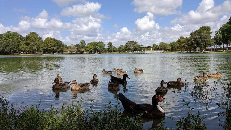 Mary Jo Peckham Park