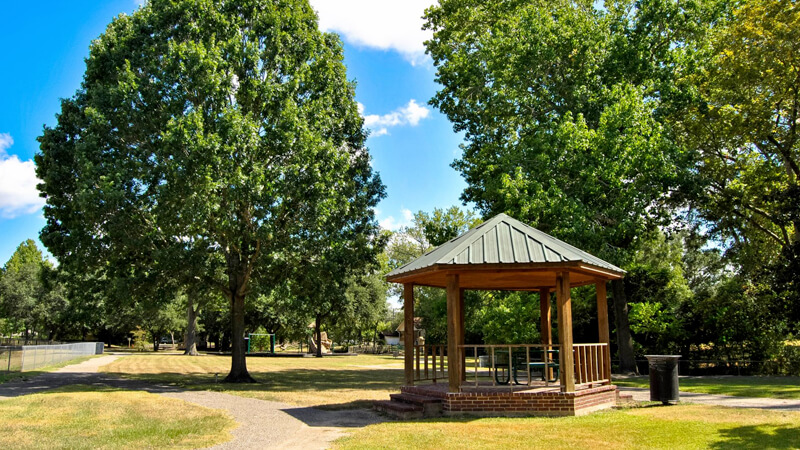 Thomas Park